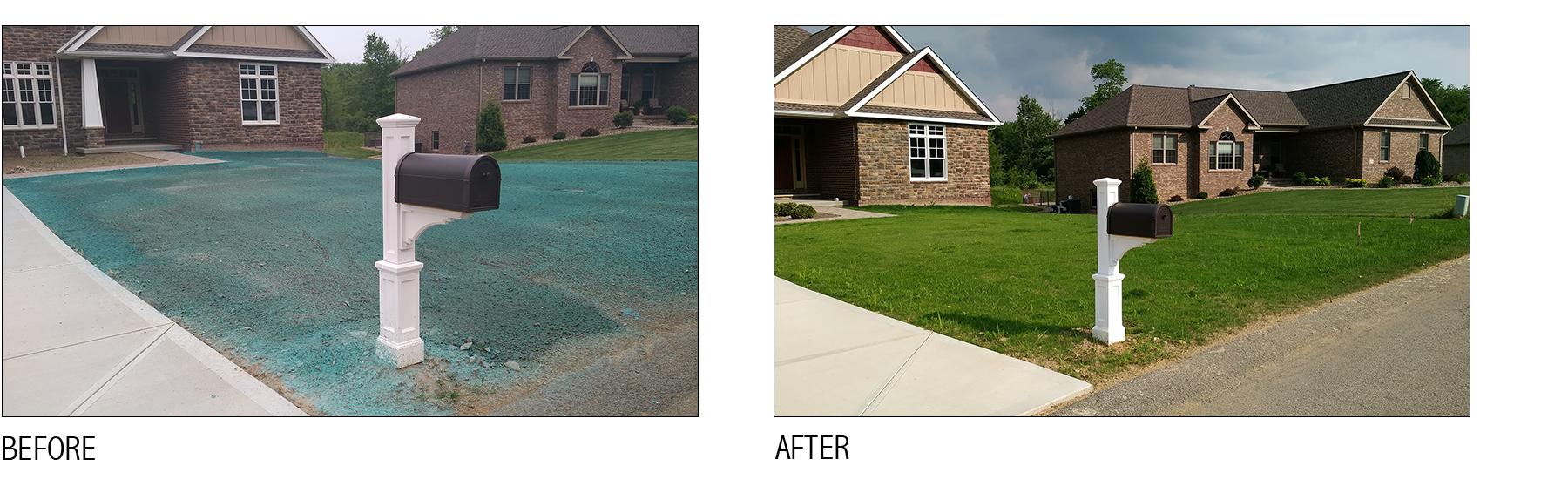 hydroseed lawn install